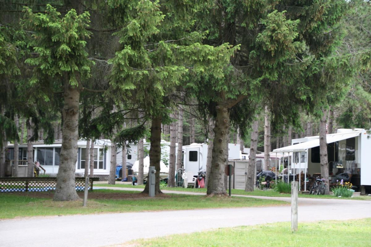 Leelanau Pines Campground Cedar Mi Crazy4camping