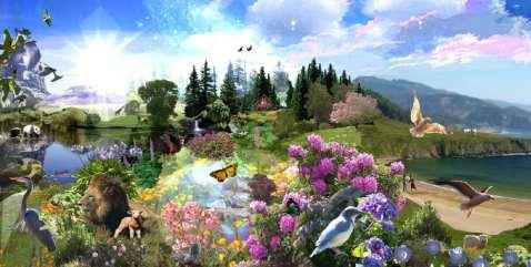 Résultats de recherche d'images pour «paradis heaven»