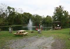 AR pond