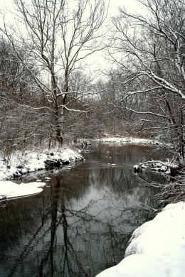 Dudley Woods, Liberty Twp.OH