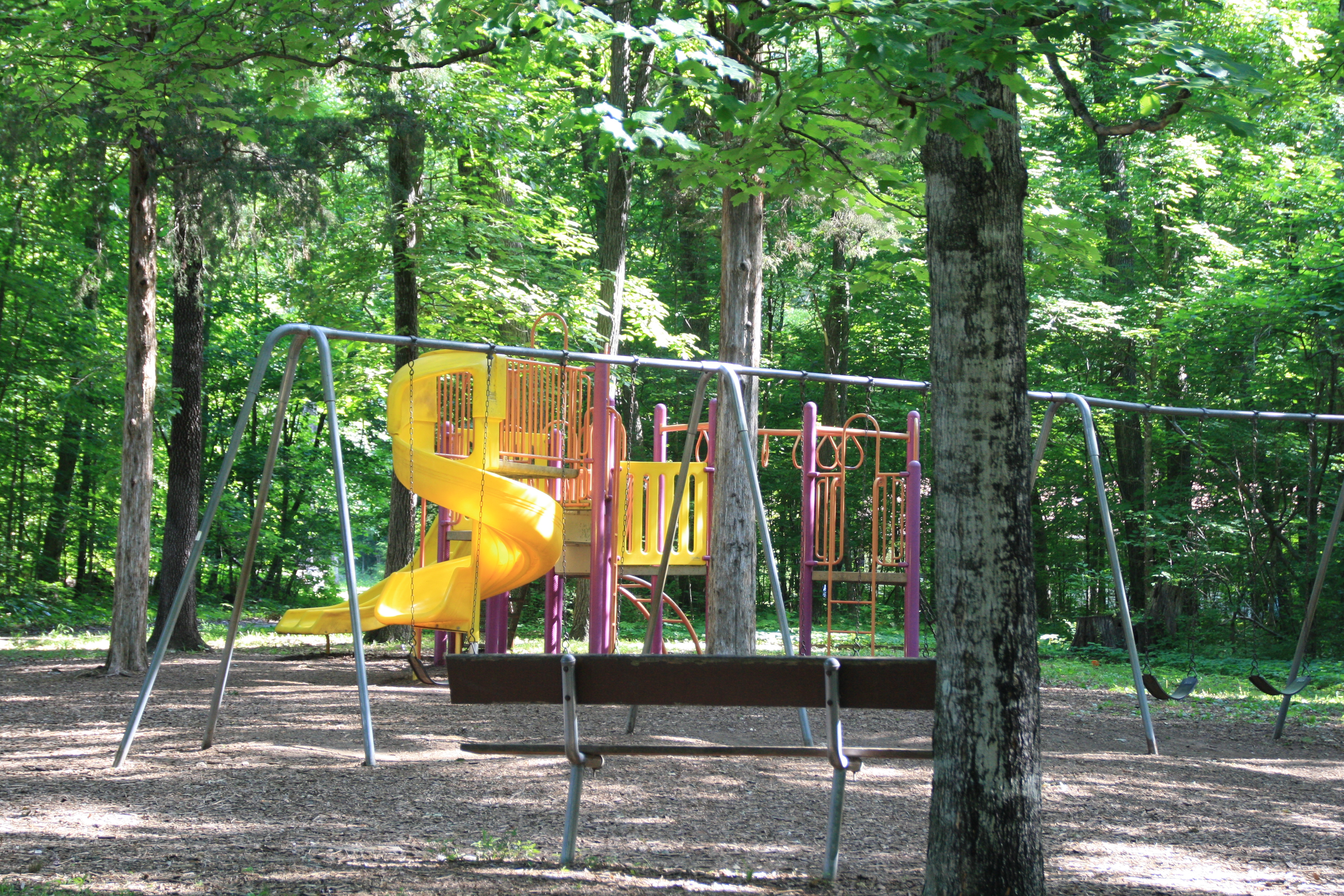 Cedars of lebanon state park lebanon tn crazy4camping for Marshalls cedar park