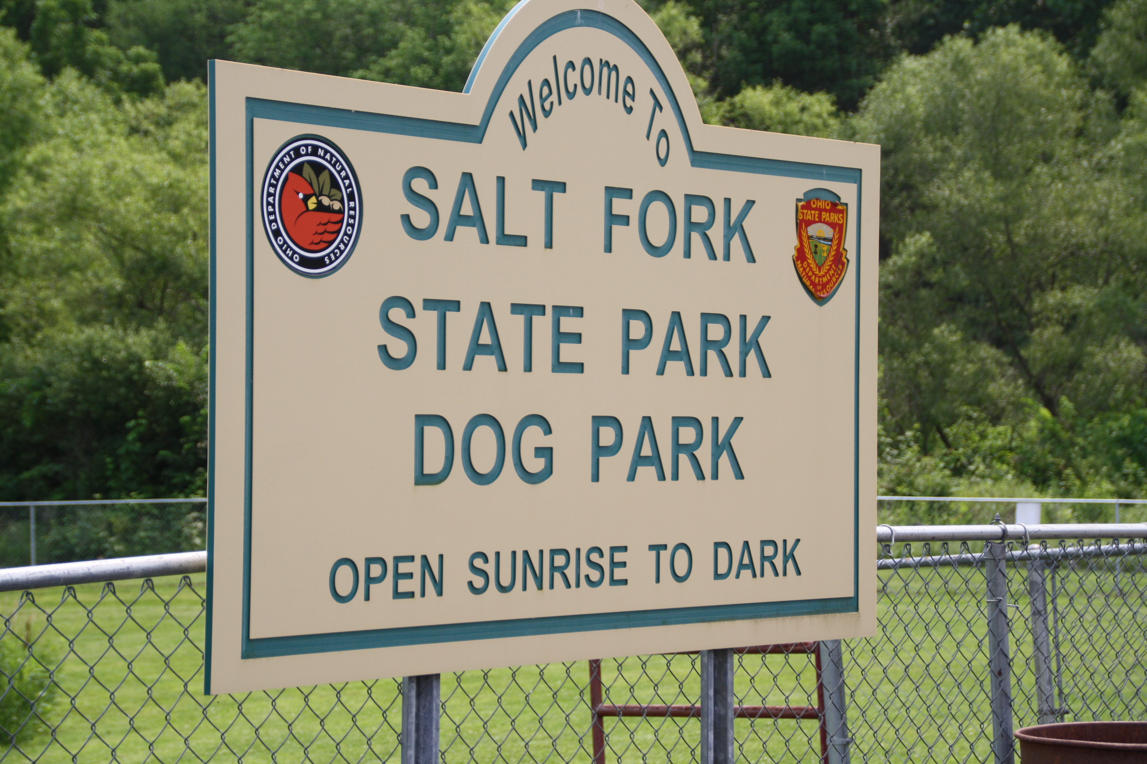 Salt Fork Lake State Park Lore City Oh Crazy4camping