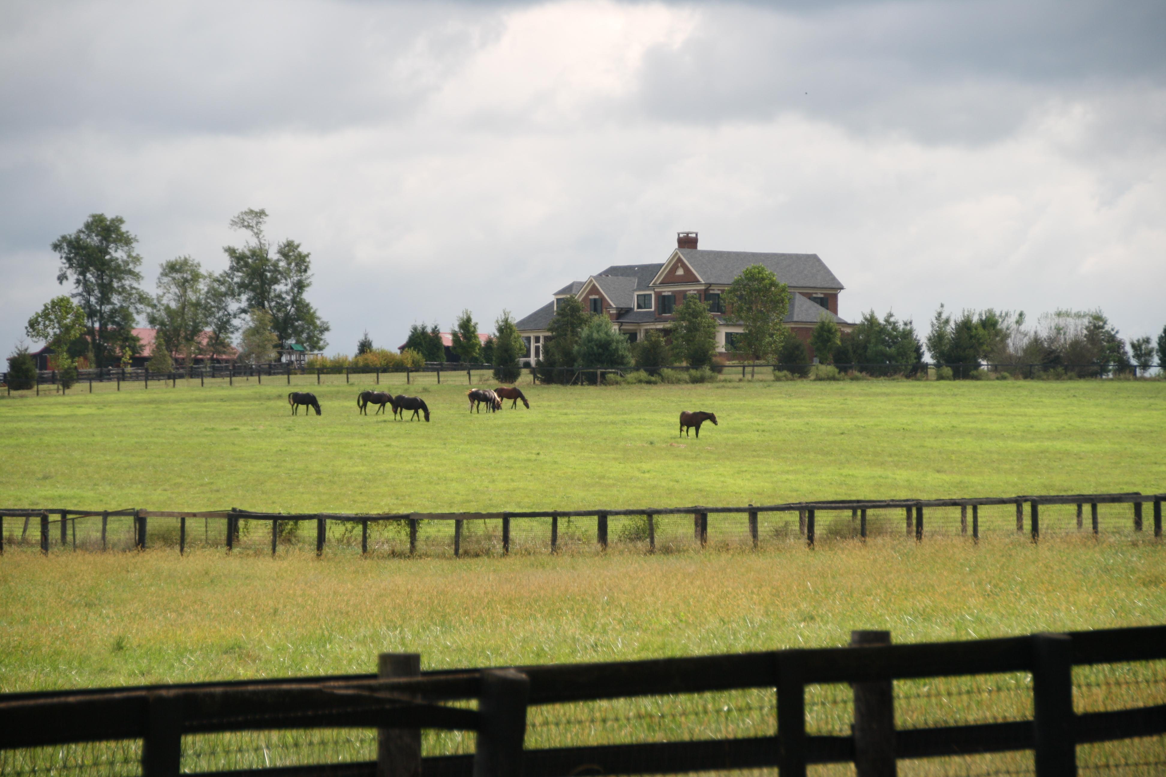 Kentucky Horsepark Campground Lexington Crazy4camping