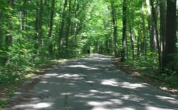 Turkey Run State Park, MarshallIN